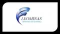 Leominas Equipamentos Magnéticos