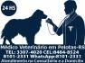 Médico Veterinário a Domicílio em Pelotas- RS