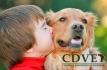 CDVET - Centro de Diagnóstico Veterinário