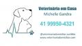 Veterinária Especialista em Domicílio para Cães e Gatos em Curitiba 41 99950-4321