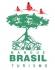 Mangue Brasil Turismo