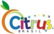 Citrus Brasil Modas