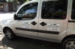 Pet e Táxi Dog Anjos da Guarda - Transporte de Animais de Estimação.