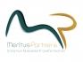 Meritus Partners - Consultoria e Desenvolvimento de Negócios no Rio de Janeiro