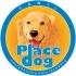 Adestramento, Hospedagem, Canil Place Dog