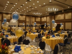 Sanny & cia balloon designer - foto 21