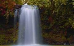 Camping paiol �guas da prata - cachoeiras