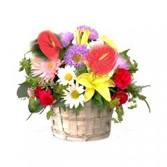 Floresnaweb -   arranjo luxo