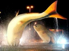 Praça do peixes