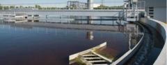 Consultoria ambiental e proteão ambiental
