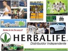 Herbalife - distribuidor independente - s�o paulo - foto 11