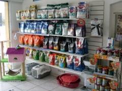 Pet Shop em Curitiba City Cão