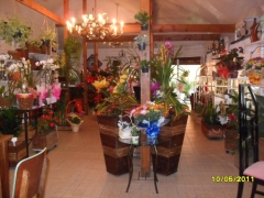 Emporio natural garden floricultura e cestas especiais em curitiba - foto 8