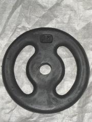 Anilha vazada de 5 kg