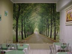Angela decoraÇÕes cortinas persianas almofadas papel de parede colchas sancas de isopor em campo largo - foto 9