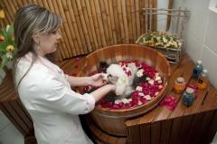 Banho relaxante no ofurô da clínica veterinária boa esperança