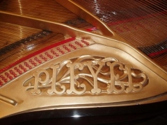 Miranda pianos - foto 13