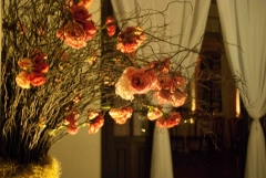 Floricultura amor-perfeito - foto 1