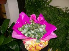 Arranjos para vasos de flores naturais!