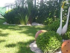 Esmeralda jardinagem - foto 20