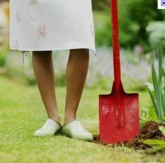 Foto 16 casa e jardim no Goiás - Agência de Emprego Goiás