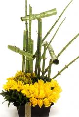 Floricultura santa maria - foto 3
