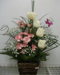 Floricultura santa maria - foto 14