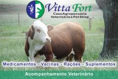 Vittafort - agropecuária, consultório veterinário e pet shop - foto 9