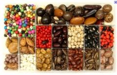 Agro sementes & rações ltda - foto 15