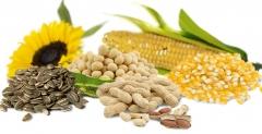 Agro sementes & rações ltda - foto 8