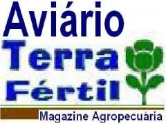 Magazine aviário terra fértil