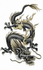 somos como os dragoes!!!!!!  UMA LENDA VIVA