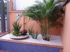 Foto 5 beleza e estética no Mato Grosso do Sul - Sauna Ibiza
