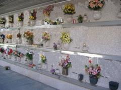 Foto 3 cemitérios no Mato Grosso - Cemitério Parque bom Jesus