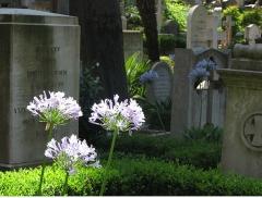 Foto 2 cemitérios no Mato Grosso - Cemitério Parque bom Jesus