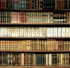 Biblioteca Rui Barbosa  - Foto 3