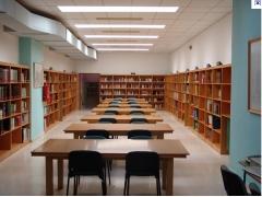 Biblioteca Rui Barbosa  - Foto 1