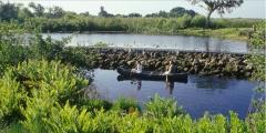 Eco omni consultoria ambiental - foto 9
