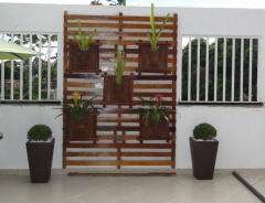 A goiabeira jardinagem e paisagismo - foto 20