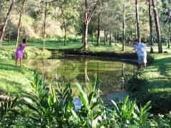 Lago para pescar na pousada colina verde