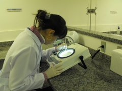 Leitura de uma amostra microbiológica em nosso contador.
