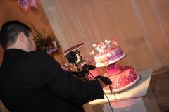 Trabalhamos tambem com eventos sociais, aniversarios, casamentos dentre outros.
