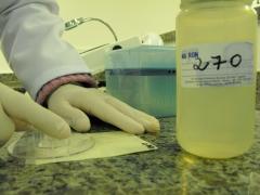 Análises microbiológicas em alimentos, água, cosméticos, medicamentos e efluentes.