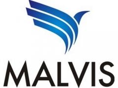 Malvis - criação de sites novo hamburgo - rs