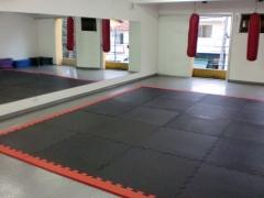 Sala de atividades 1 - muay thai, ginástica, pilates e danças de salão