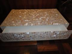 Pastilhado de madrepérola- revestindo móvel