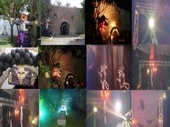 Festas temáticas, havai,halloween,baile a fantasia