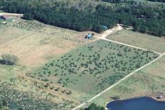 Aero fazendas - imagens aéreas para propriedades rurais - foto 30