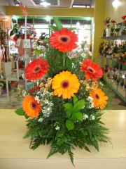 Foto 4 floriculturas - Floricultura Santa Maria