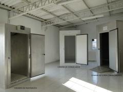 Showroom com três de nossas câmaras frigoríficas